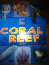 What Can I See Coral Reef