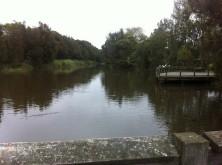 Lagoon from Park Street Bridge (looking up towards the creek)