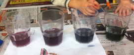 Cabbage juice indicator